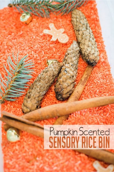 Make a super scented pumpkin scented rice sensory bin with your kids!
