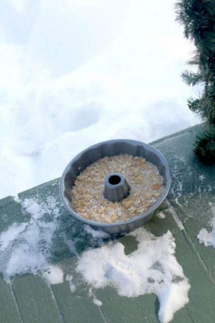 Freeze your ice wreath bird feeder outside - or in your freezer.