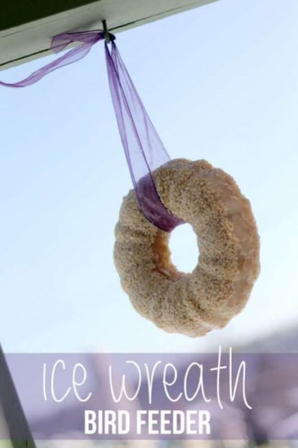 Your backyard birds will love this ice wreath bird feeder!