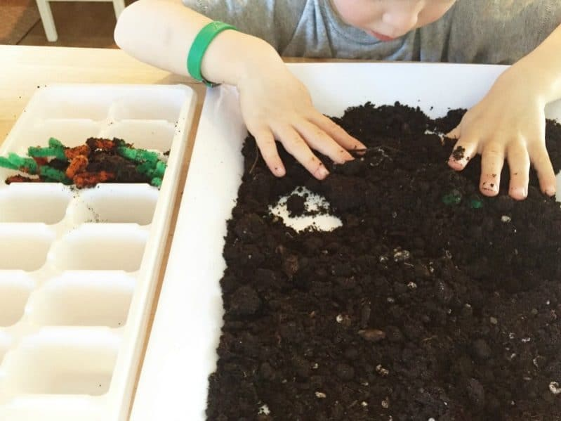A sensory garden fine motor activity is a fun way to learn about spring.