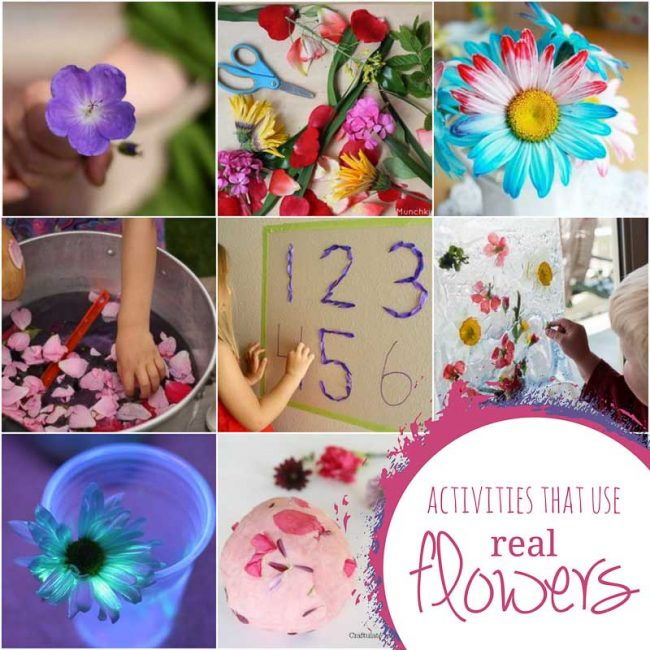 Activities for kids that use real flowers
