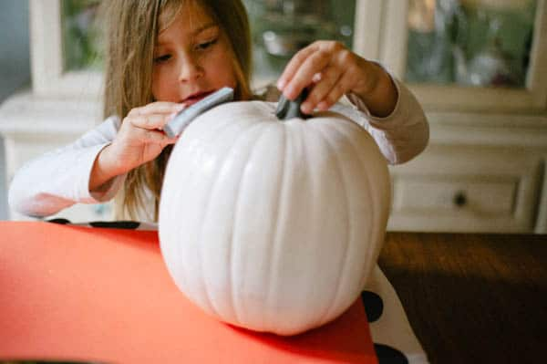 hoawg-pumpkin-seed-pumpkins-7-of-17