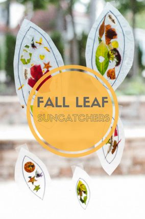 What a cute fall leaf suncatcher craft that's so simple for the kids to make!