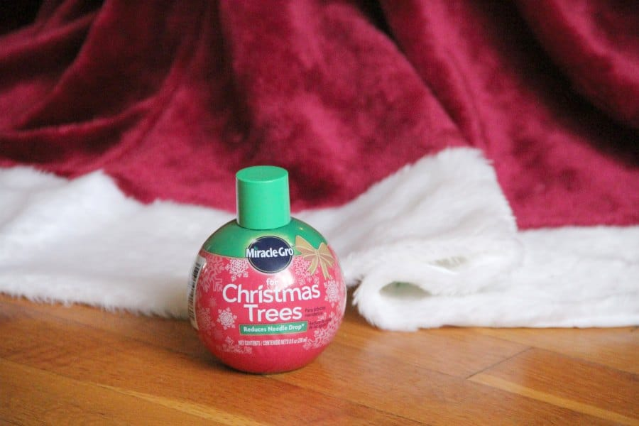 Christmas ornament craft and Miracle Gro for Christmas Trees will make memories this year.