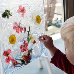 Nature Sensory Bag Suncatcher