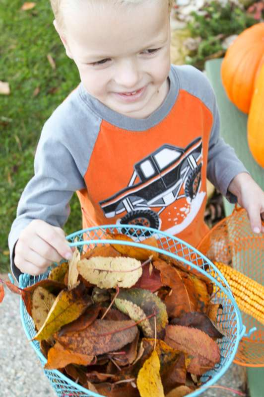 Collect leaves to make a leaf garland to decorate for fall