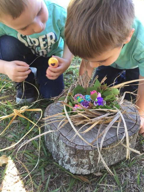 Nest or Bed for Hatchimals eggs in Fields of Lavender