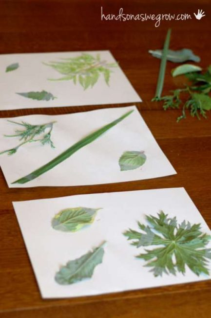 Create a fun matching game with leaf rubbings!