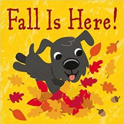 Fall is Here! by Fhiona Galloway