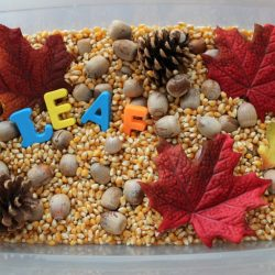 Leaf Sensory Bin- Teaching Mama