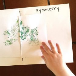 Learn Symmetry with No Worksheets- Hands On As We Grow
