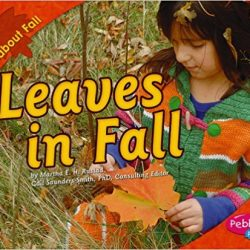 Leaves in Fall by Martha E. Rustad