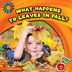 What Happens to Leaves in Fall? by Rebecca Felix