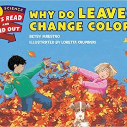 Why Do Leaves Change Colors by Betsy Maestro