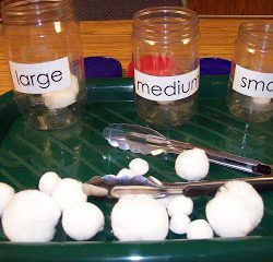 Sorting Snowballs- Learning and Teaching with Preschoolers
