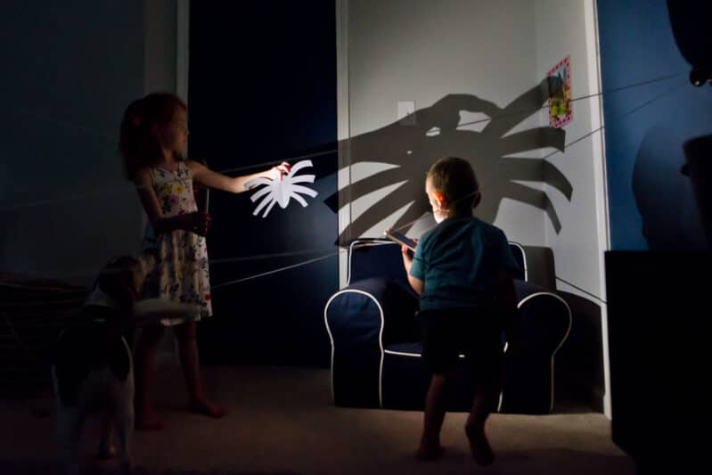Shine the light on your spider to cast a giant shadow!