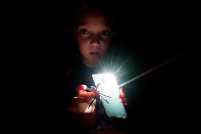 Go on a not-so-spooky spider hunt in the dark with flashlights!