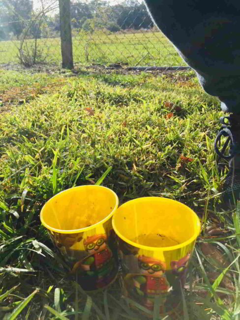 Learn how a little sun changes dirt and water in an easy earth science experiment for kids!