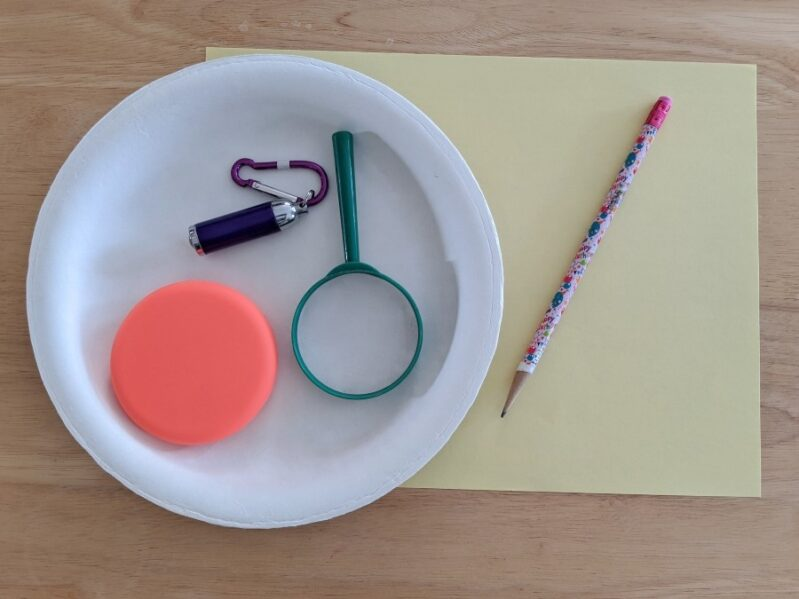 We love a good science activity that uses supplies we already have at home like this one!