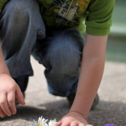 Hands On As We Grow- Counting Flower Petals