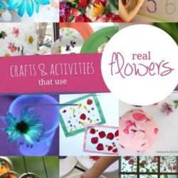 Hands On As We Grow- Real Flower Crafts