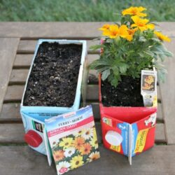 Hands On As We Grow- Upcycled Carton Flower Garden