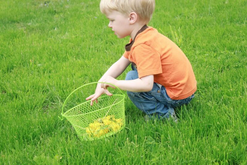 playing outdoors picking dandelions