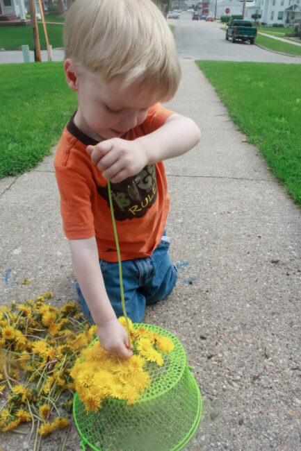 Fine motor threading dandelions into a basket