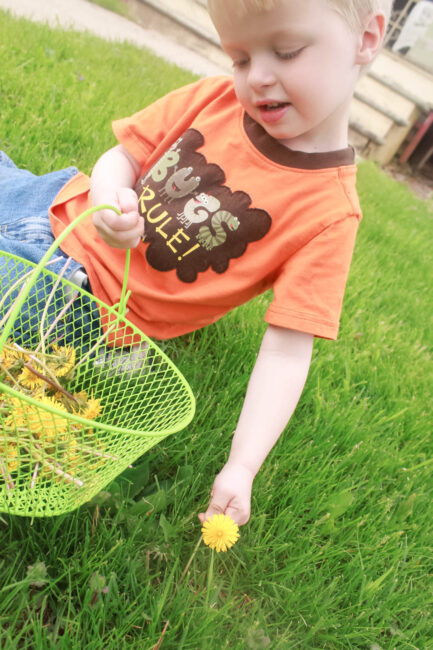 A dandelion activity that ends with fine motor threading! Win-win!