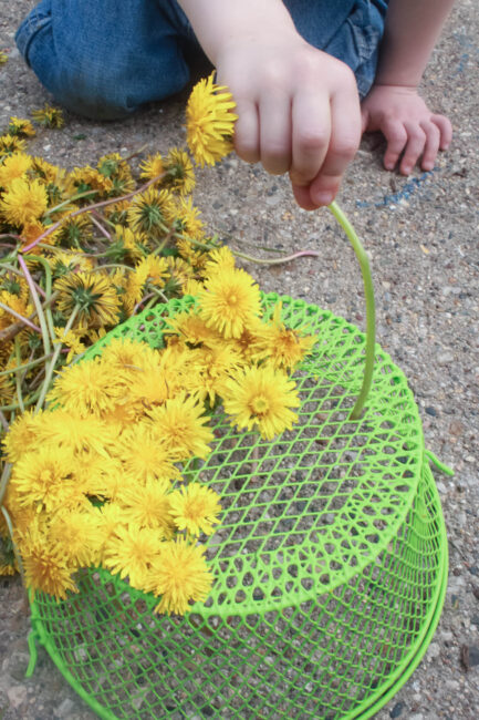 Fun fine motor threading activity with dandelions