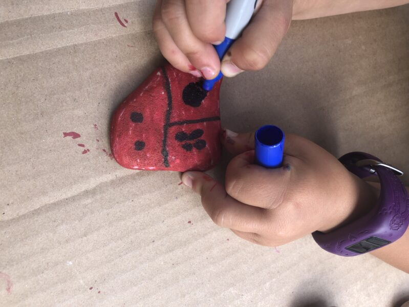 Rock Coloring and Hiding Activity