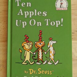 Ten Apples Up On Top Book