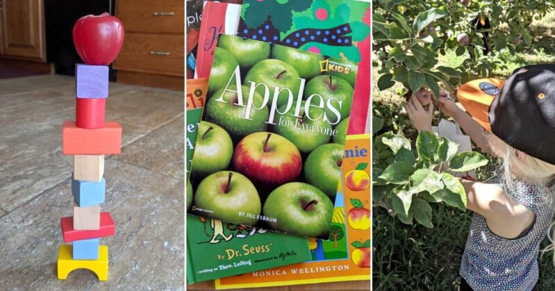 An apple book inspired week of reading and activities to get your kids ready for back-to-school this fall! Apple fun for the whole family!