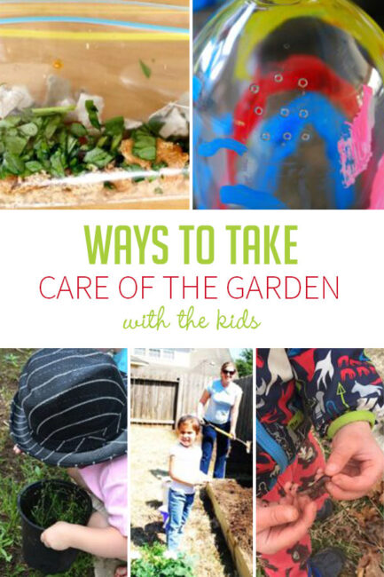 Ways to take care of your garden with kids involved.