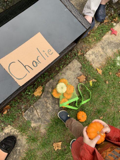 Name example for pumpkin sorting