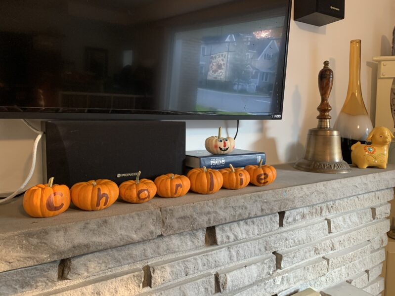 Displaying final product from pumpkin hunt and name sort for thanksgiving.