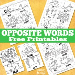 Opposite Words Printable - Itsy Bitsy Fun