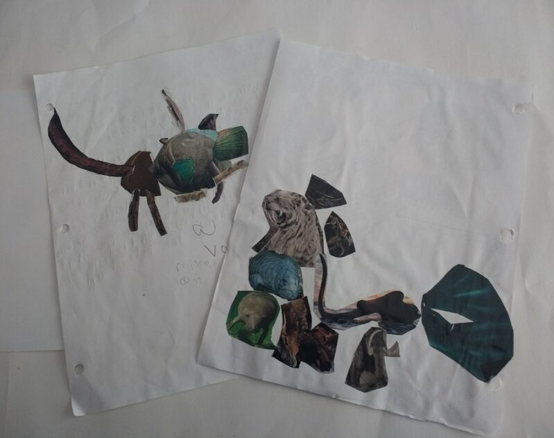 create your own animal craft using magazines for kids