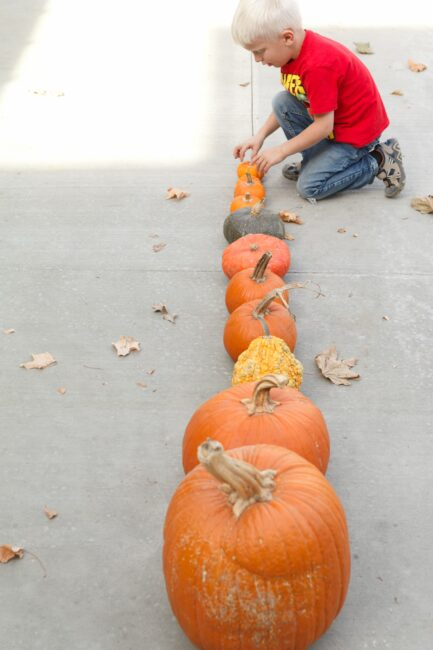 Get your toddlers and preschoolers to sort as many pumpkins as you can find from tallest to shortest with this easy autumn activity.