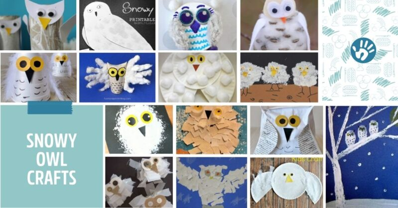 Let your imagination take flight with snowy owl crafts and creative activities that your kids are sure to love!